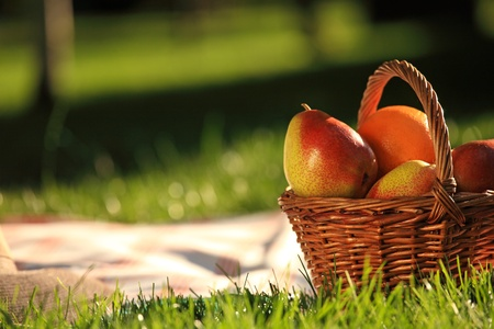 gruszka: Picnic basket with fruits on grass in summer park
