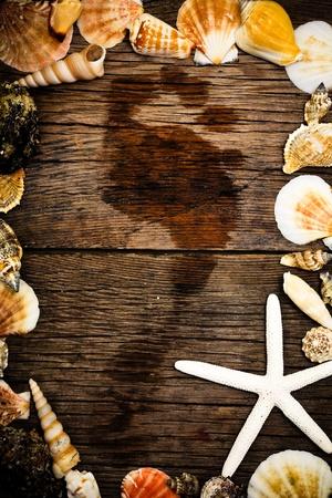Seashells frame on old wooden background Stock Photo - 9185447