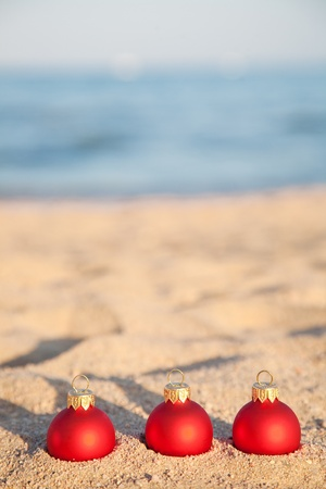 beach happy new year: Christmas tree decorations on sea coast