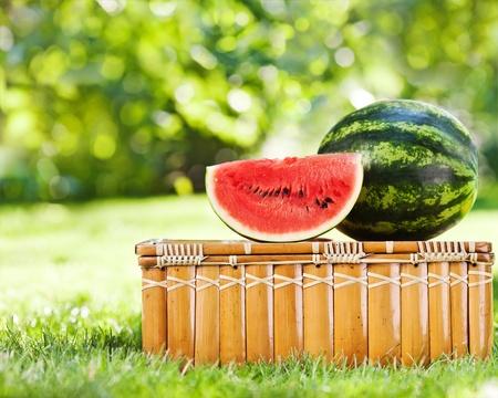 comiendo frutas: Jugosa tajada de sandía, y en la cesta de picnic contra el fondo verde natural en primavera
