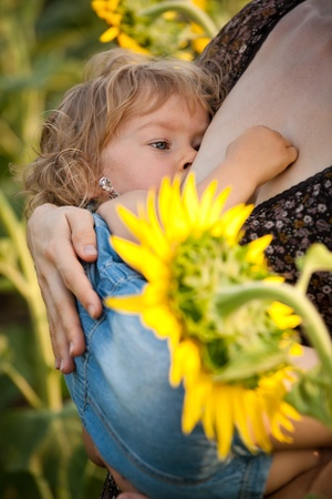 Baby breastfeeding in spring sunflower field Stock Photo