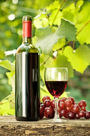 Red wine bottle, one glass and bunch of grapes on old wooden table against vineyard in summer photo