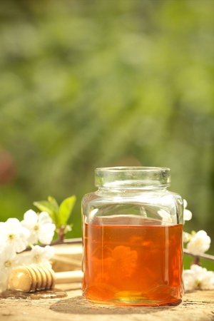 Honey jar, flower and wooden stick on table against spring natural background photo