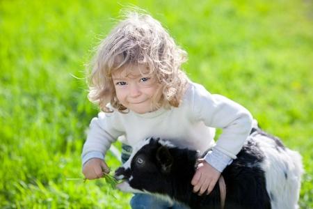 smiling goat: Child feeding goat kid in spring field Stock Photo
