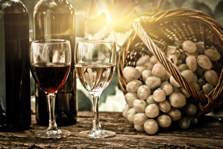tasting: Wine bottles, two glasses and bunch of grapes in basket against vineyard in spring. Vintage look Stock Photo