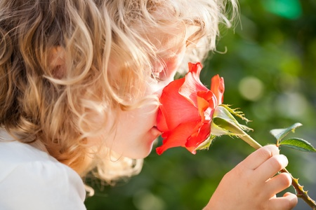Child with rose flower in spring garden