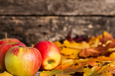 beautiful thanksgiving: Autumn border from apples and maple leaves on wooden background Stock Photo