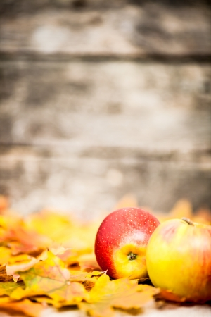 Autumn border from apples and maple leaves on old wooden background photo