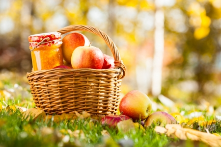 Jam in jar and basket full of fresh red apples on a grass. Autumn harvest concept