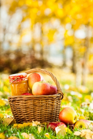 strew: Homemade jam in jar and basket full of fresh juicy apples on a grass. Autumn harvest concept