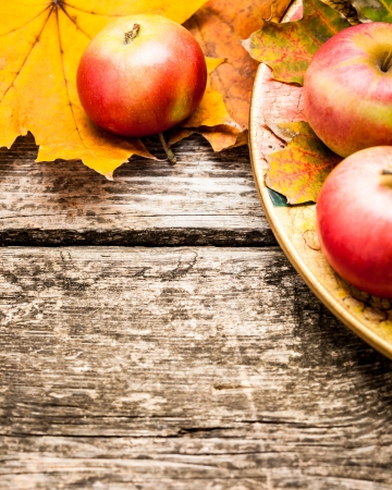 autumn harvest: Border from apples and autumn leaves on old wooden table. Thanksgiving day concept Stock Photo