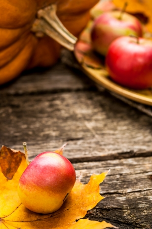 Autumn background with apples, pumpkin and maple leaf on old wooden table. Thanksgiving day concept. Shallow depth of fields Stock Photo