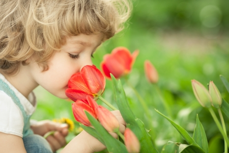 Child smelling tulip flower in spring outdoors Stock Photo