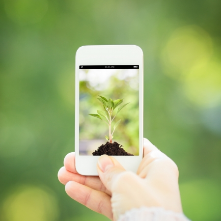 woman phone: Woman hand holding smart phone against spring green background