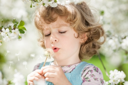 blowing dandelion: Child blowing on dandelion against spring green background Stock Photo