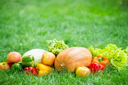 Fruits and vegetables on green grass Stock Photo - 17359951