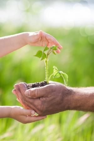 Menselijke handen die jonge plant tegen de lente groene achtergrond Ecology concept Stockfoto