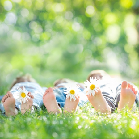 Family with daisy flowers lying on green grass against spring blurred background Stock Photo - 17642591
