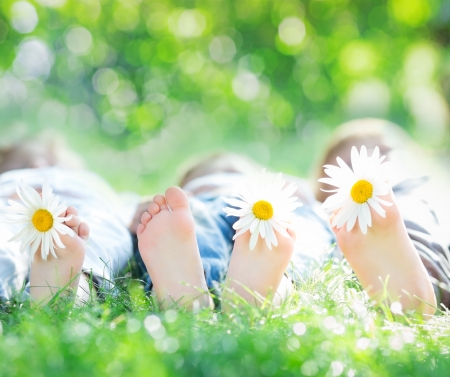 kids feet: Healthy feet of family with daisy flowers on green grass against blurred spring background. Farmland vacations concept