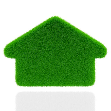 Eco grass house isolated on white background  Ecology concept photo