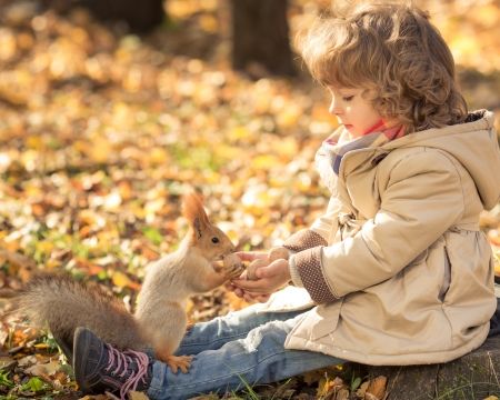 幸せな子供は秋の公園での小さなリスをフィードします。