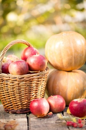 Fruits and vegetables in autumn outdoors. Thanksgiving holiday concept photo