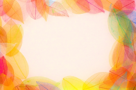 Autumn leaves frame. Abstract background photo