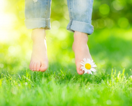 Healthy feet with daisy flower over green spring grass photo