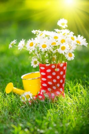 Hermoso ramo de flores de primavera en botas rojas Foto de archivo - 25222224