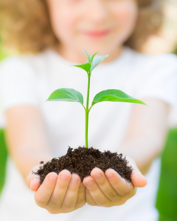 Kid holding young plant in hands against spring green background. Ecology concept Standard-Bild