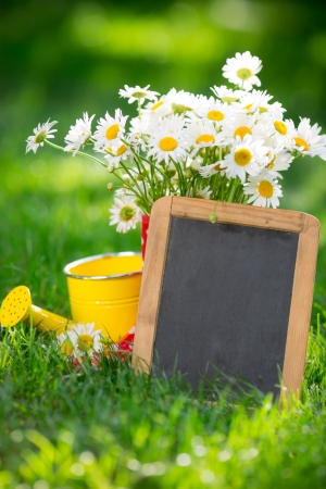 Beautiful bunch of spring flowers and blackboard blank in grass