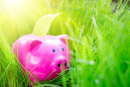 Piggybank and leaf on green spring grass. Shallow depth of field photo