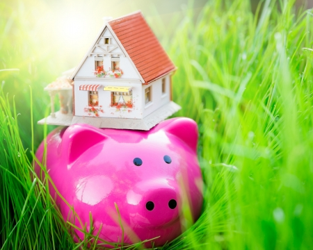 financial protection: Piggybank and house on green spring grass. Shallow depth of field Stock Photo