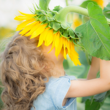 Happy child smelling beautiful sunflower outdoors in spring field photo