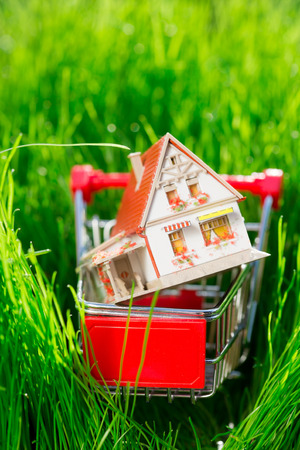 House in shopping cart. Real estate concept photo