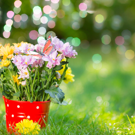 Beautiful bunch of spring flowers in red bucket Stok Fotoğraf