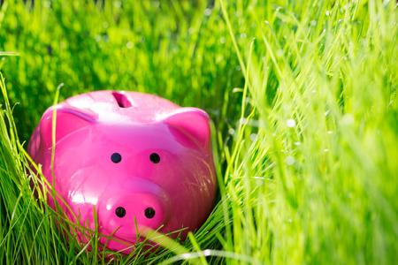 Piggybank on green spring grass. Shallow depth of field photo