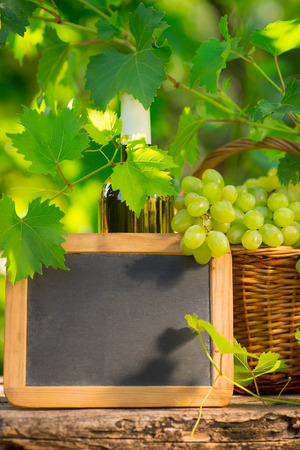 White wine bottle, blackboard blank and bunch of grapes against green spring background photo
