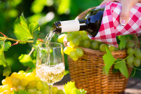 Pouring white wine in glass outdoors Imagens