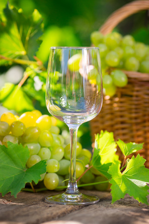Bunch of white grapes in basket and empty glass outdoors photo