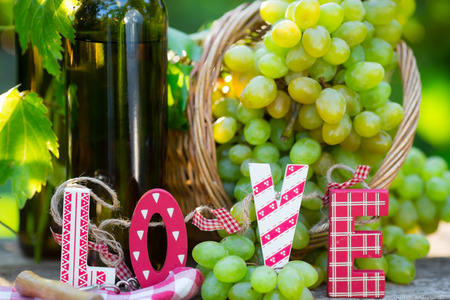 White wine bottle, young vine and bunch of grapes against green spring background photo