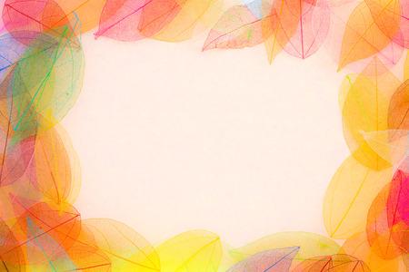 秋の背景。秋の葉のフレーム