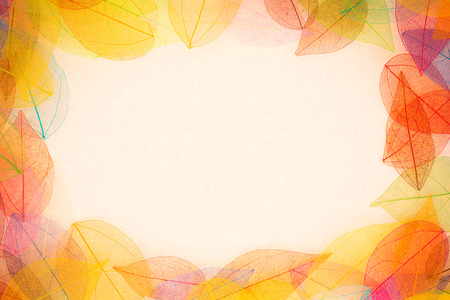 coloured background: Autumn background. Fall leaves frame Stock Photo