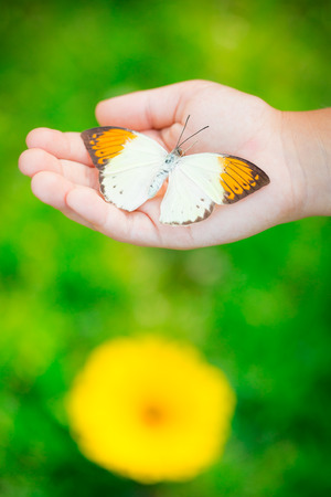 Butterfly in children hand against spring background Stock fotó