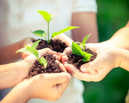 Pflanzen: Kinder, junge Pflanze in den Händen gegen grünen Hintergrund Frühjahr. Ökologie-Konzept. Tag der Erde