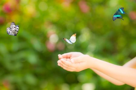 butterflies flying: Niños manos y volar de mariposa contra el fondo verde de la primavera. Concepto de la ecología