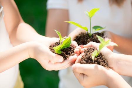 bambini: Bambini che tengono giovane pianta nelle mani contro sfondo verde primavera. Ecologia concetto. Giorno della Terra