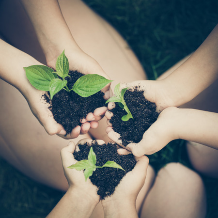 earth friendly: Children holding young plant in hands against spring green background. Ecology concept. Earth day Stock Photo