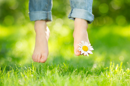 Healthy feet with daisy flower over green spring grass