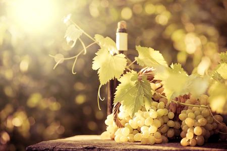 ワインの瓶と秋にツルのブドウ 写真素材